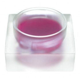 Brillo de labios Bordeaux 06 - Sante, $11.65