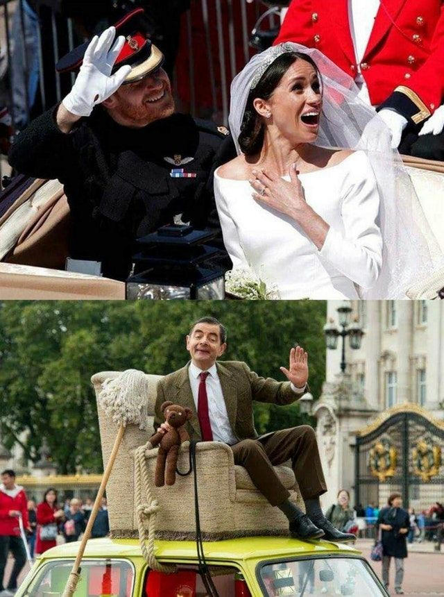 Royal Wedding Memes.Funny Royal Wedding Meme Funny Pictures Funny Jokes Funny