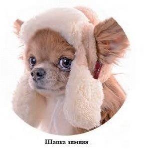 Шапки для собак, зимняя шапка для собак