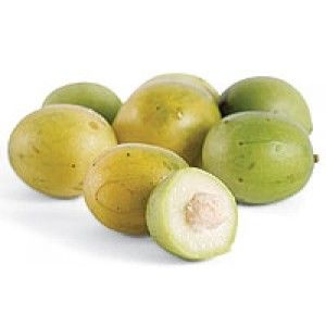 Umbu - O suco do Umbu contém sais minerais e vitaminas, principalmente de vitamina C, com eficiente efeito curativo nos casos de escorbuto. Fonte:http://www.nutrirmaos.com.br/polpa-de-fruta/66  Imagem:http://acaiecompanhia.com.br/loja/index.php?route=product/product&product_id=67