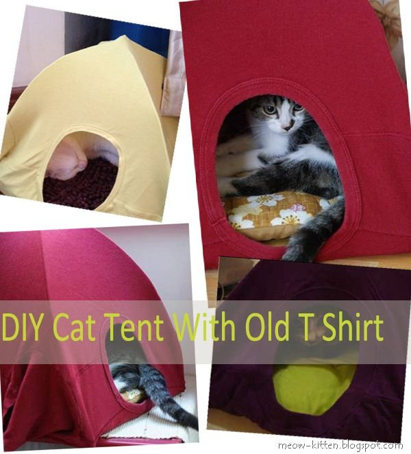 Easy 3 Steps to DIY cat tent with your old T shirts - No sewing machine, No cutting. Check your closet; I am sure there's an old T shirt just waiting to be reused. - What will you need? 1 old t shirt - 2 Hangers - 1 Old Cushion - Some strong paper - Iron Wire - A cat