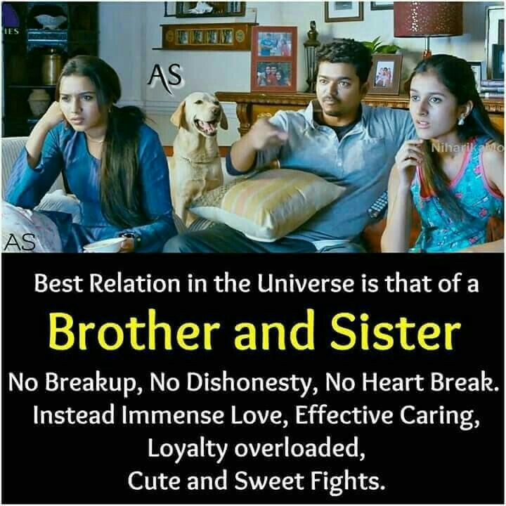 Brother And Sister Relationship Quotes In Gujarati: My Best English Teacher Essay