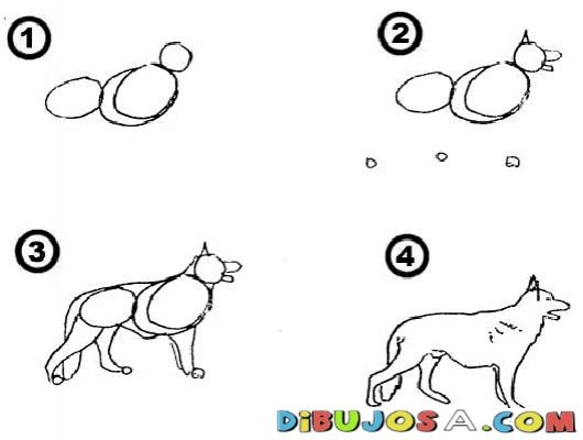 Como Aprender A Dibujar Un Perro Pastor Aleman En 4 Pasos Para Pintar Y Colorear | COLOREAR COMO APRENDER A DIBUJAR | Como Aprender A Dibujar Un Perro Pastor Aleman En 4 Pasos Para Pintar Y Colorear | dibujosa.com