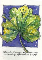 JaneVille: green leaf