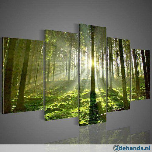 Groene Bos Zonlicht - 5 Luik Canvas Schilderij XXL nr37 - Te koop