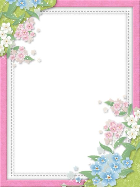 Pink Transparent Frame with Flowers