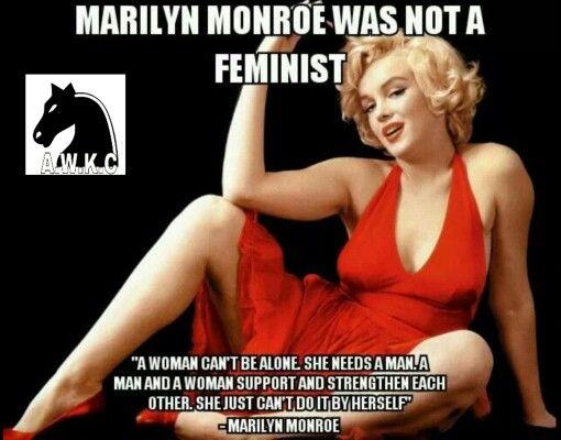 2d21a98cc9eb35da6a8b8e7859cb6504--modern-feminism-anti-feminist.jpg