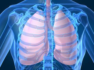 how to clear up bronchitis naturally