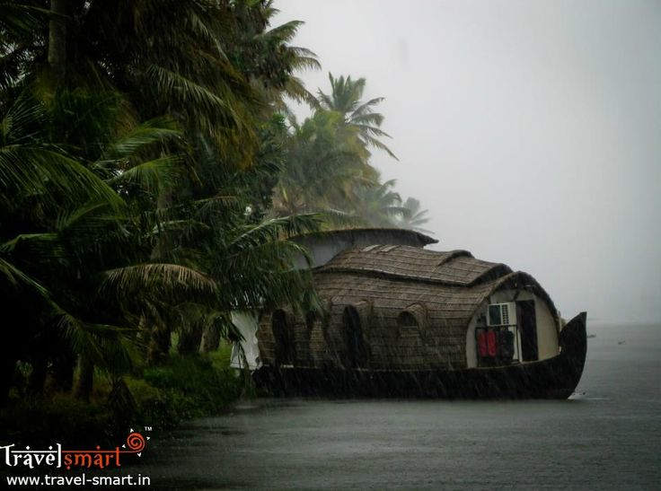 Kerala tops #Google search in travel destination  #Kerala is the #number 1 travel destination in Google's search trend for India this year. Travel to God's Own Country with our unbeatable packages, combined with exlcusive perks.  Contact us for smarter deals: +91 93419 18386 /+91 98437 63464 #Travel #KeralaTourism #Keralatourpackages #Placestovisit #TravelKerala