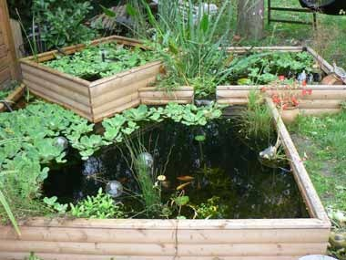 17 best images about bassin on pinterest gardens decks and backyards - Bassin carre bois mulhouse ...