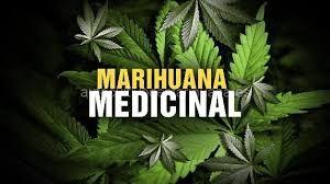 Resultado de imagen de marihuana medicinal