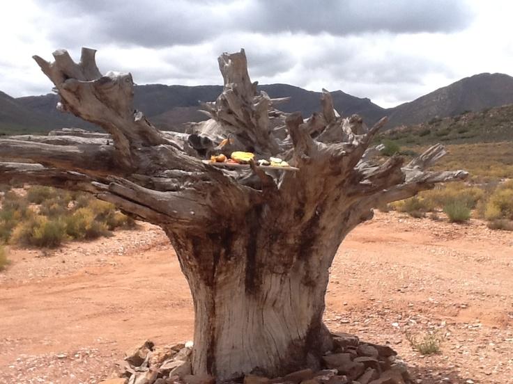 Slanghoek Karoo Mountain Retreat