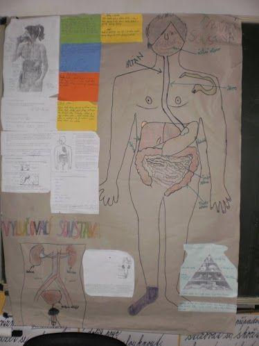 Projektový den - Lidské tělo