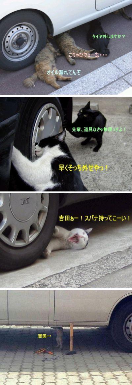 猫の整備士 Neko no seibishi オイル流れてんぞ。こりゃひでぇーな。。。タイヤ外しますか。 Oiru nagaretenzo. Koryahidee-na... Taiya hazushimasuka. 先輩、道具なきゃ無理っすよ. Senpai, dougu nakya murissuyo. 早く、そっちゃ外せやっ! Hayaku, soccha hazuseya! 吉田!スパナを持ってこーい! Yoshida! Supana wo motte ko-i! 吉田。