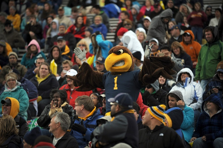 flashing at football game - photo #24