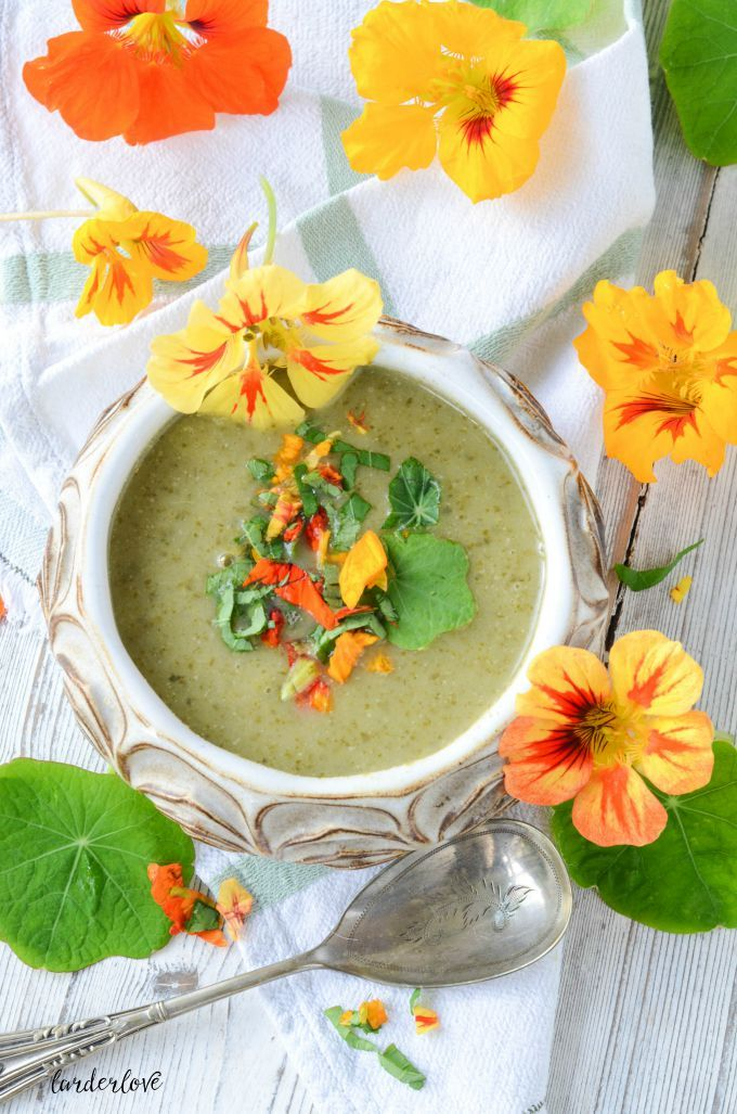 This deliciously light and spicy nasturtium soup makes a wonderful starter served hot or chilled.