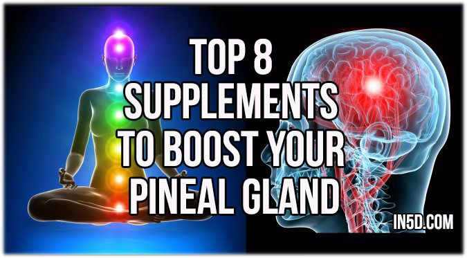 by Anna Hunt The pineal gland, an endocrine gland located in the brain, is said to be the seat of the soul. Also referred to as the Third Eye, this small gland is believed to be involved in reachin…