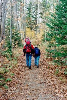 Autumn Hike in Tremblant
