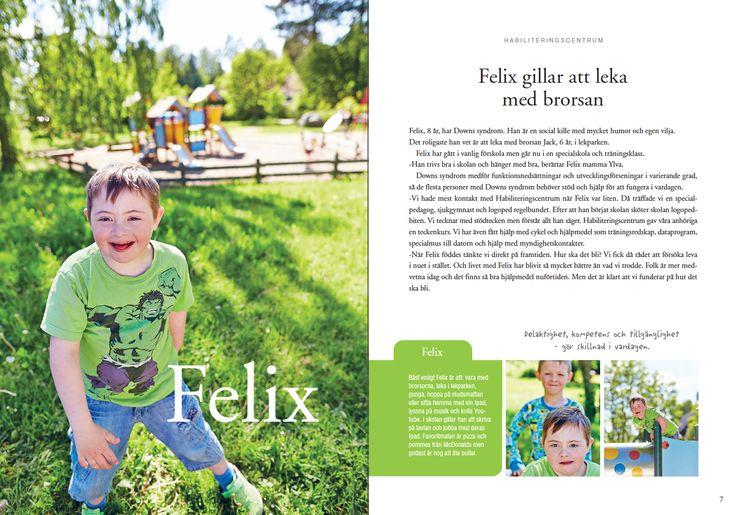 Felix, Landstinget Västmanland