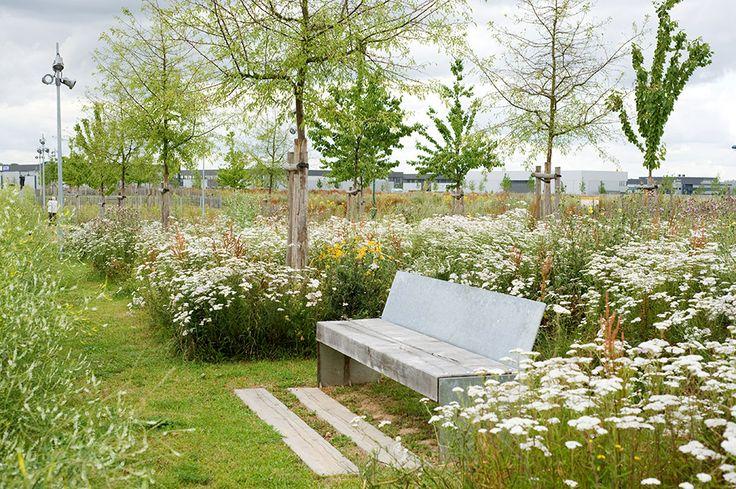 Montevrain_Park-Urbicus_landscape_architecture-05 « Landscape Architecture Works | Landezine