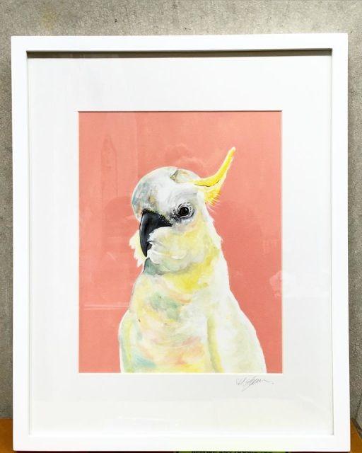Art, cockatoo, sulphur, original, native, white cocky, white cockatoo, cockatoo painting, cocky painting, bird art, vixen designs