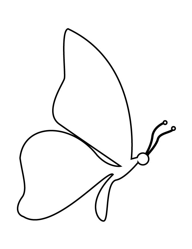 butterfly stencil simple drawing side drawings stencils butterflies monarch glass cupit fused