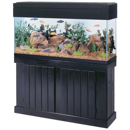 "All Glass Aquarium Cabinet Stand Pine 48"" x 28"""
