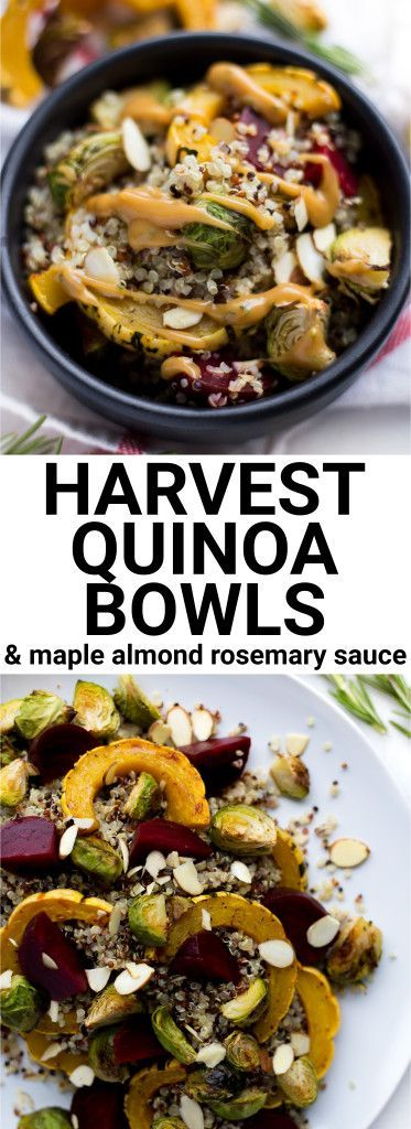 Harvest Quinoa Bowls with Maple Almond Rosemary Sauce: these bowls are vegan, gluten free, and full of fall vegetables! The thick and creamy maple almond rosemary sauce is not to be missed! || fooduzzi.com recipe