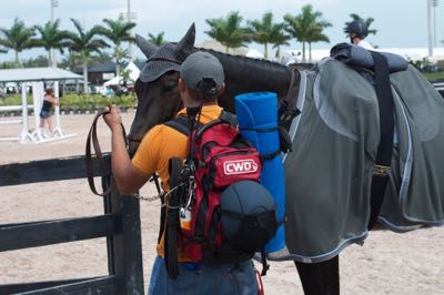 What to carry ringside at shows!   http://www.proequinegrooms.com/index.php/tips/equipment-and-tack/warm-up-ring-tips/