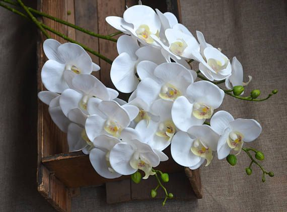 White Orchids Real Touch Flowers Phalaenopsis True Touch Artificial Orchids DIY Silk Wedding Bouquets Wedding Centerpieces