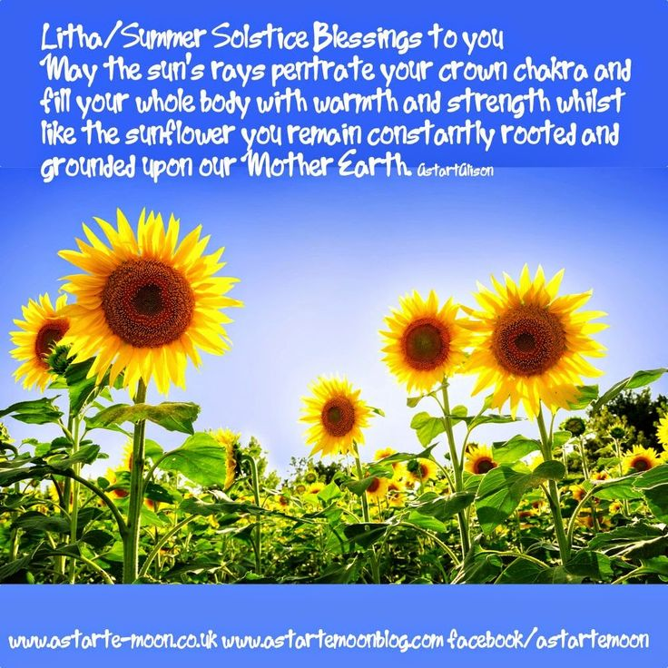 Litha Summer Solstice Blessings to you. May the sun's rays penetrate ...