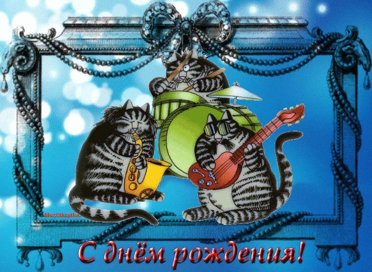 Гифки с днем рождения другу мужчине прикольные, про котов картинки