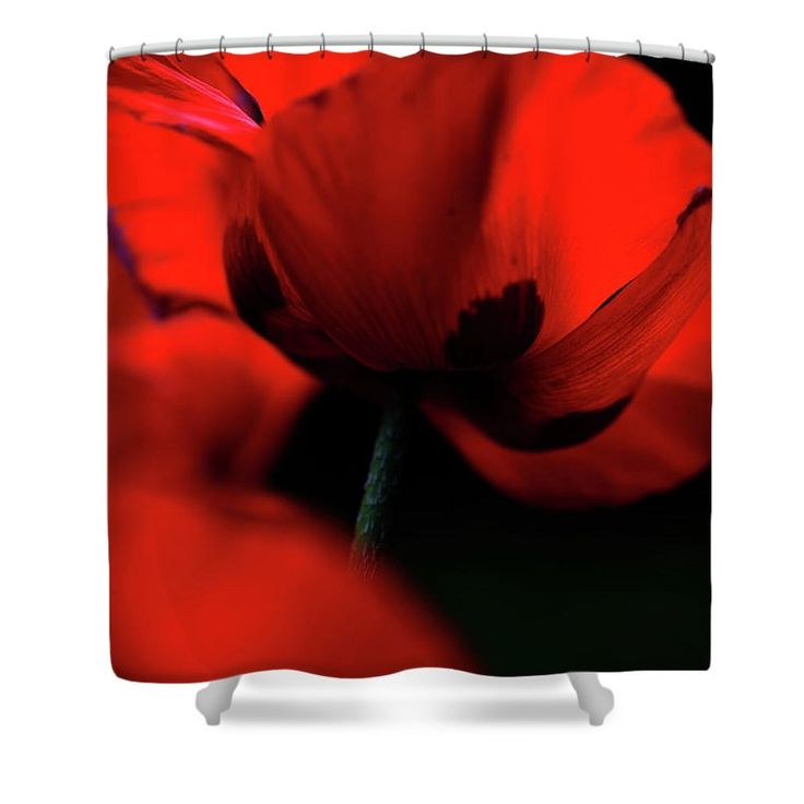 "Flaming Red Poppies Shower Curtain by Jenny Rainbow.  This shower curtain is made from 100% polyester fabric and includes 12 holes at the top of the curtain for simple hanging.  The total dimensions of the shower curtain are 71"" wide x 74"" tall."