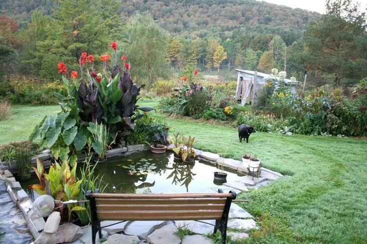 aménagement jardin bassin d'eau banc de jardin en bois