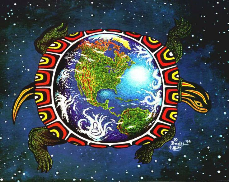 On the Back of a Turtle We TravelAmerican Indian, Mothers Earth, Native Things, Native Roots, Native Wisdom, Turtles Earth, Earth Mothers, American Turtles, Native American