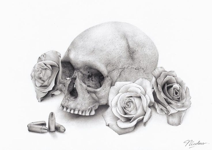 Skull and Roses pencil drawing by Nicolaus Ferry