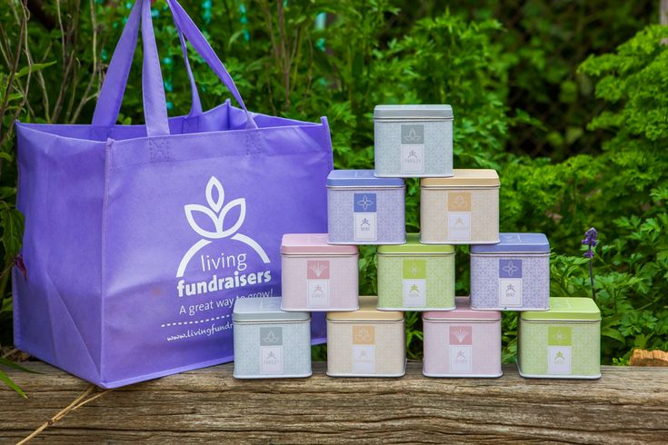 Herb Growing Kit - Living Fundraisers- unique fundraising products