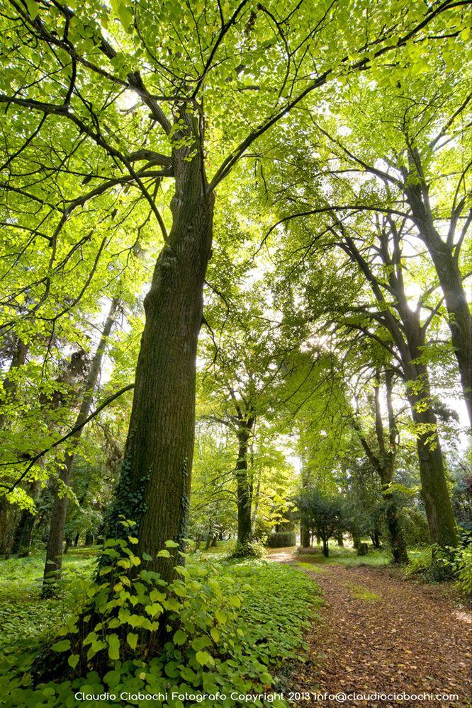 Parco Privato - Tenuta Sant Amico