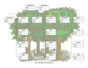 Family Tree con i cugini