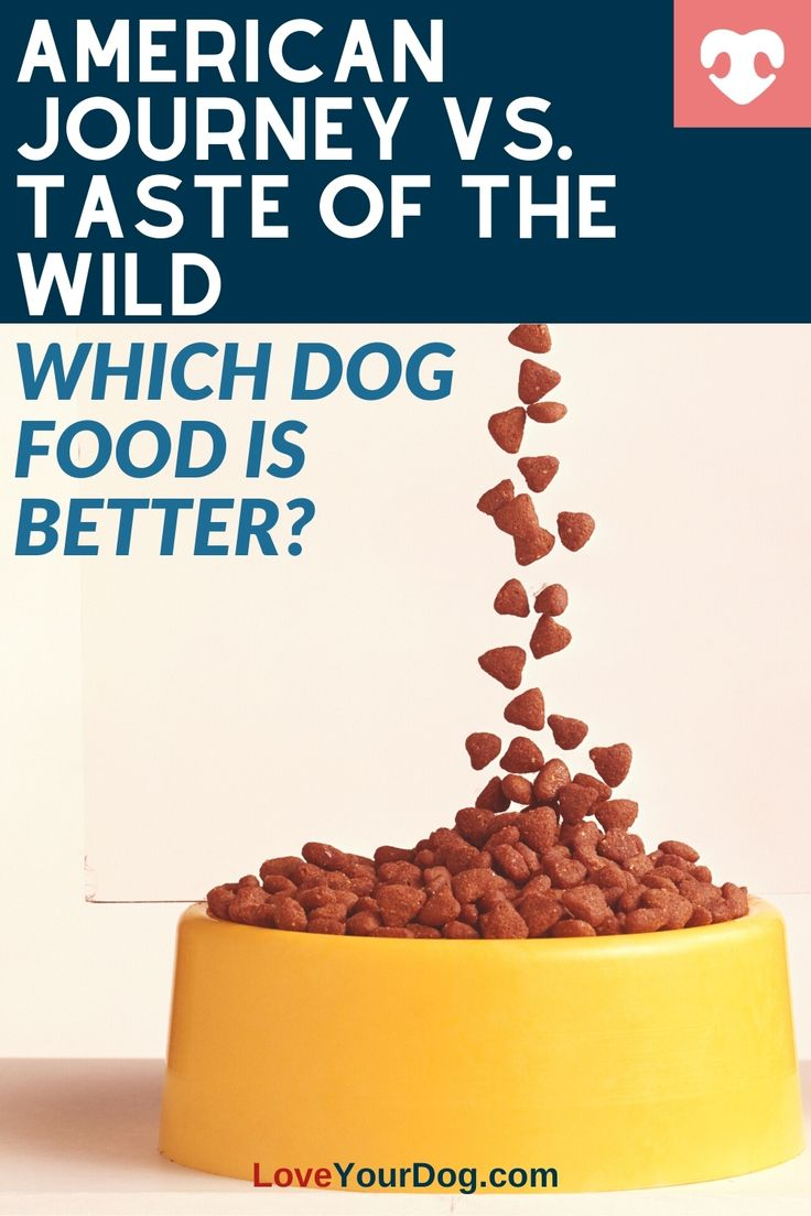 taste of the wild dog food bad reviews