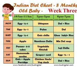 Indian Diet Chart for 8 Months Old Baby | Budding Star # ...
