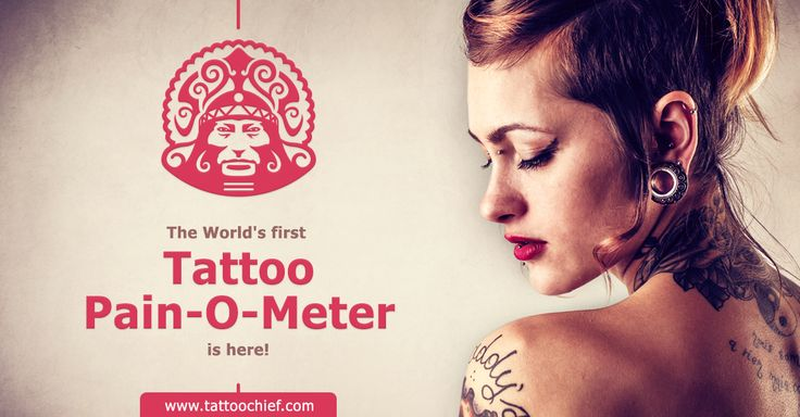 Tattoo Chief's Pain-O-Meter: The World's first smart tattoo pain calculator and interactive tattoo pain chart.