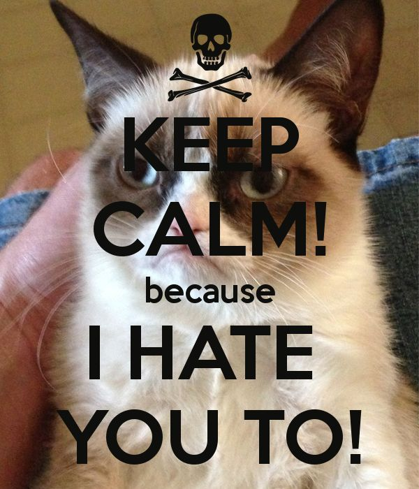 Keep On Hating Quotes: 17 Best Images About Keep Calm On Pinterest