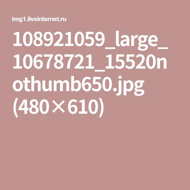 108921059_large_10678721_15520nothumb650.jpg (480×610)