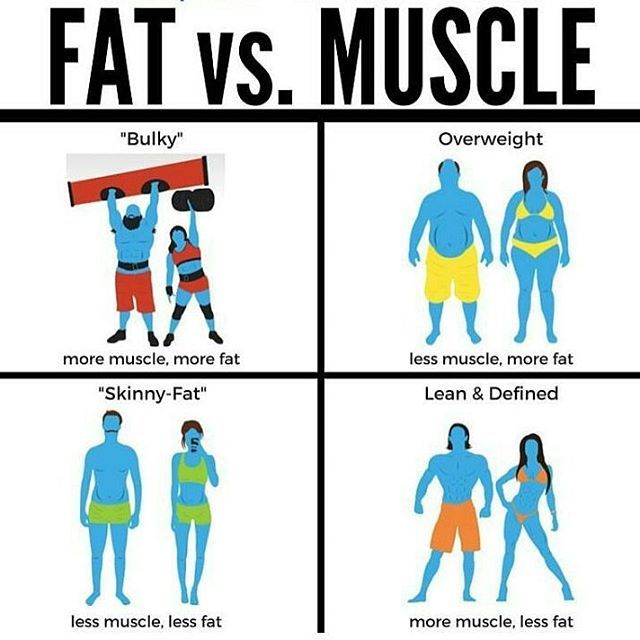 """💥FAT vs. MUSCLE💥 . . . 👍🏼There is no """"wrong"""" way to have a body, but loving yourself means taking care of yourself and prioritizing your health. ❤️ • #wednesday #motivation #lean #bulky #fat #muscle #infographic #africa #health #wellness #africahealthandwellness #nutrition #inspiredbyyourhealth #motivation #inspiration #healthyliving"""