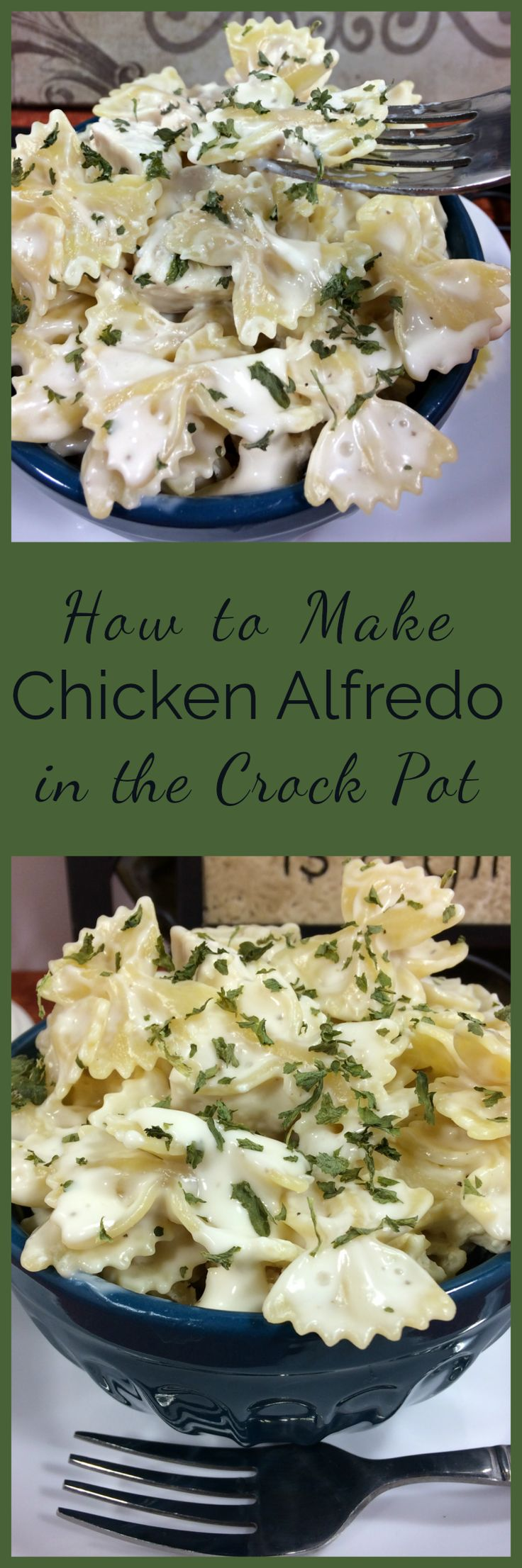Simple , budget friendly, easy Chicken Alfredo in the crock pot. With homemade Alfredo, this delicious creamy chicken and pasta is sure to be a family favorite.