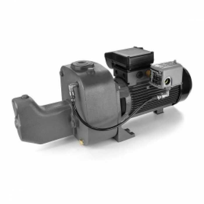 Grundfos 97855094 Shallow Well Jet Pump, 2HP, 230V, Cast Iron