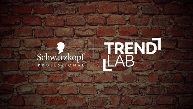 Schwarzkopf Professional TrendLab inspirációk  http://szinezdujra.com/blog/trend-lab-trend-inspiraciok-kreativ-kepzes-valos-idoben