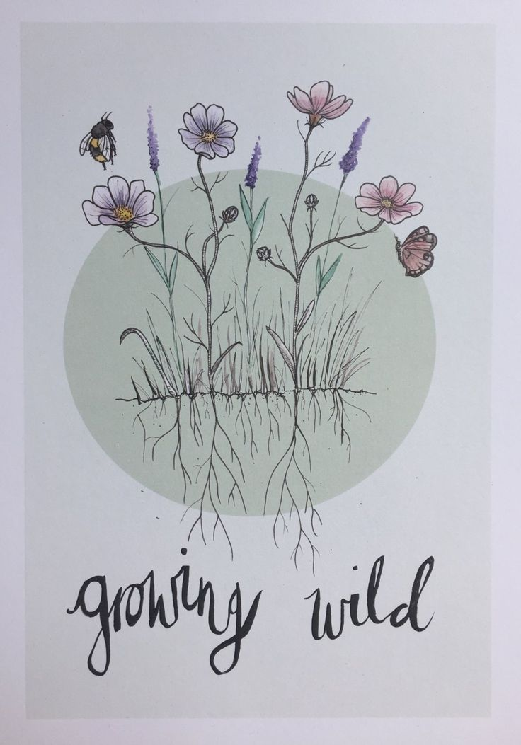 Digital print of watercolour wildflowers and insects with hand inked message.Digitally printed on A4 300gsm white recycled heavyweight paper. Please note that each print will have small variations in texture due to its recycled nature! For nursery/baby rooms with a floral, nature, wild theme.