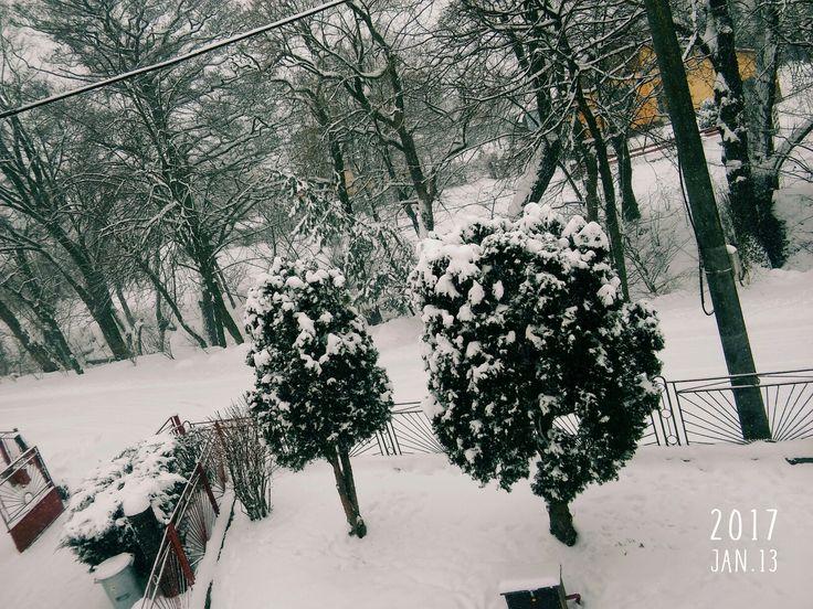 Snow 💙💜